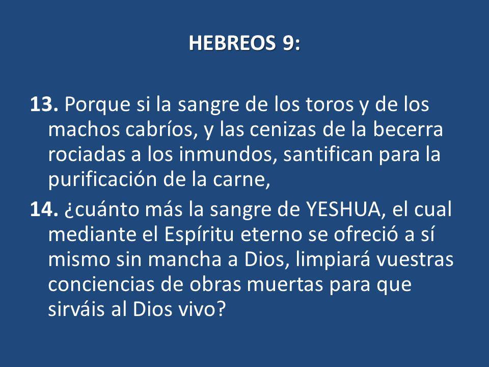 HEBREOS 9: 13.