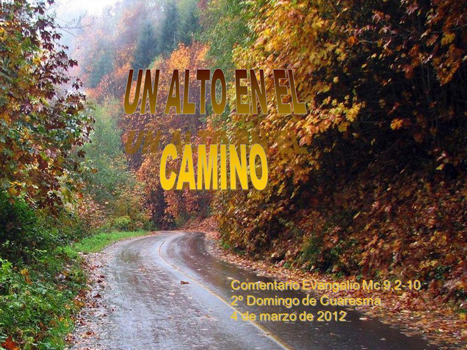 UN ALTO EN EL CAMINO. Comentario Evangelio Mc 9,2-10 2º Domingo de Cuaresma.