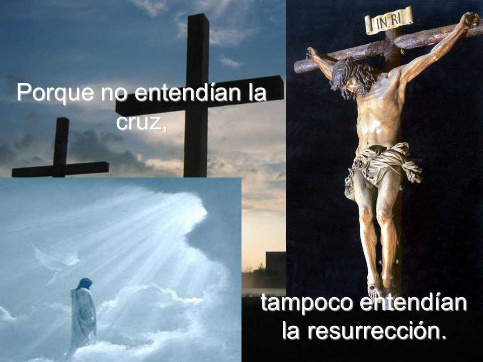 Porque no entendían la cruz,