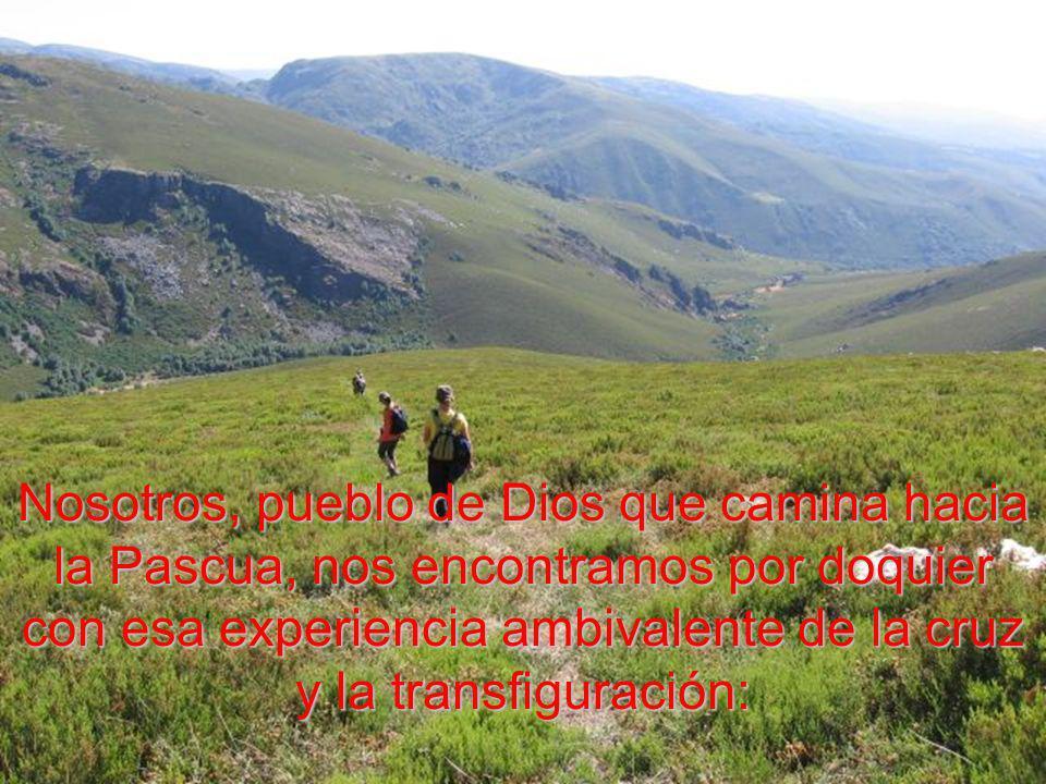 Nosotros, pueblo de Dios que camina hacia la Pascua, nos encontramos por doquier con esa experiencia ambivalente de la cruz y la transfiguración: