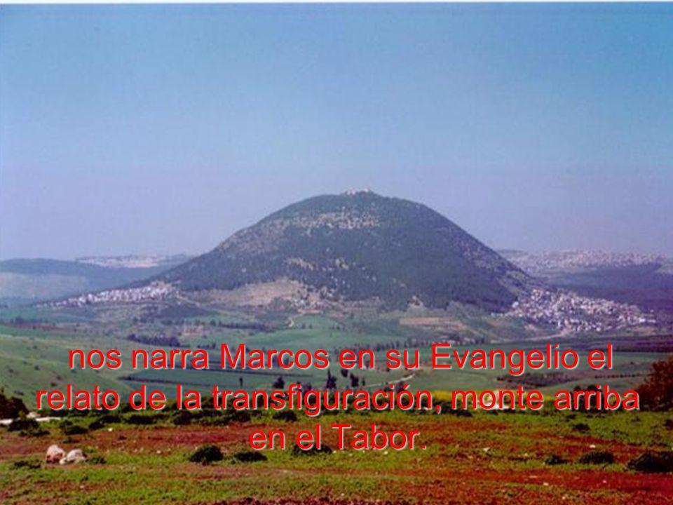 nos narra Marcos en su Evangelio el relato de la transfiguración, monte arriba en el Tabor.