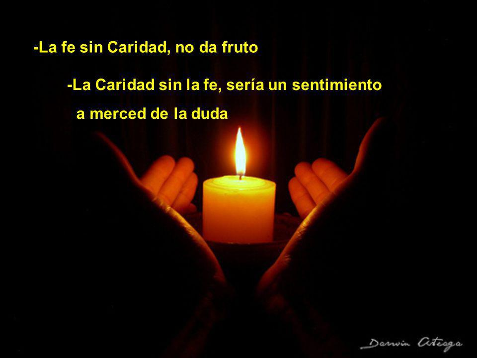 -La fe sin Caridad, no da fruto