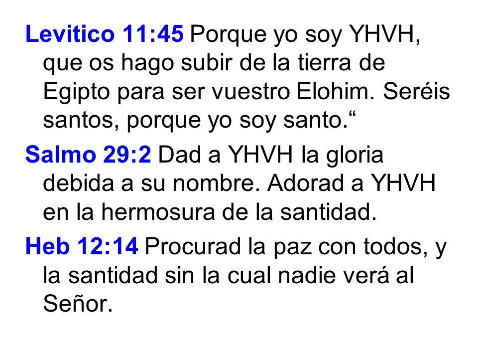 Levitico 11:45 Porque yo soy YHVH, que os hago subir de la tierra de Egipto para ser vuestro Elohim. Seréis santos, porque yo soy santo.