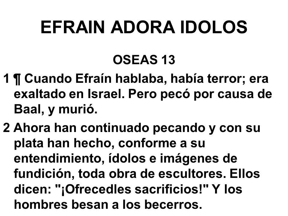 EFRAIN ADORA IDOLOS OSEAS 13