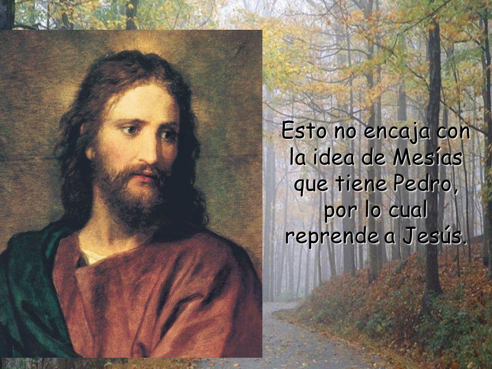 Esto no encaja con la idea de Mesías que tiene Pedro, por lo cual reprende a Jesús.
