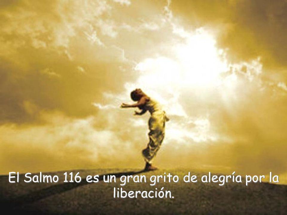 El Salmo 116 es un gran grito de alegría por la liberación.