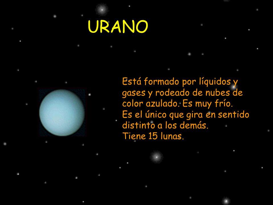 URANO Está formado por líquidos y gases y rodeado de nubes de color azulado. Es muy frío. Es el único que gira en sentido distinto a los demás.