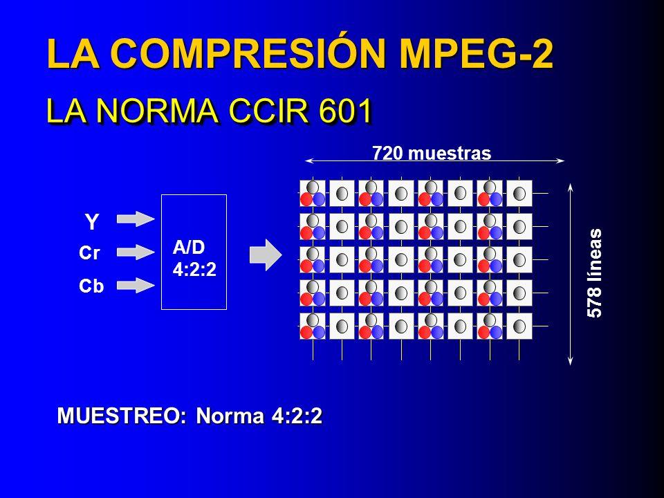 LA COMPRESIÓN MPEG-2 LA NORMA CCIR 601 Y MUESTREO: Norma 4:2:2