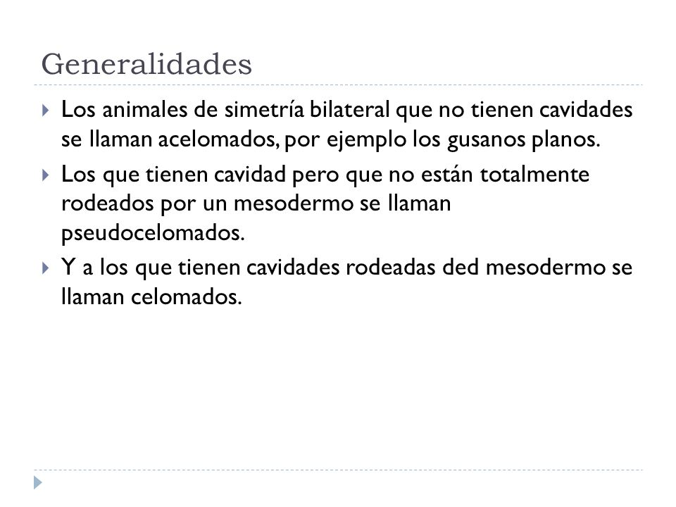 Generalidades Los animales de simetría bilateral que no tienen cavidades se llaman acelomados, por ejemplo los gusanos planos.