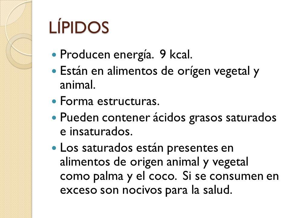 LÍPIDOS Producen energía. 9 kcal.