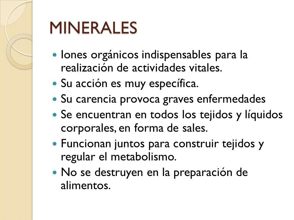 MINERALES Iones orgánicos indispensables para la realización de actividades vitales. Su acción es muy específica.