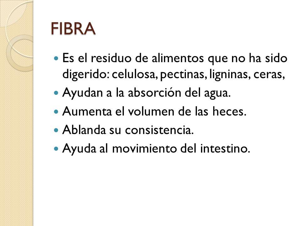 FIBRA Es el residuo de alimentos que no ha sido digerido: celulosa, pectinas, ligninas, ceras, Ayudan a la absorción del agua.