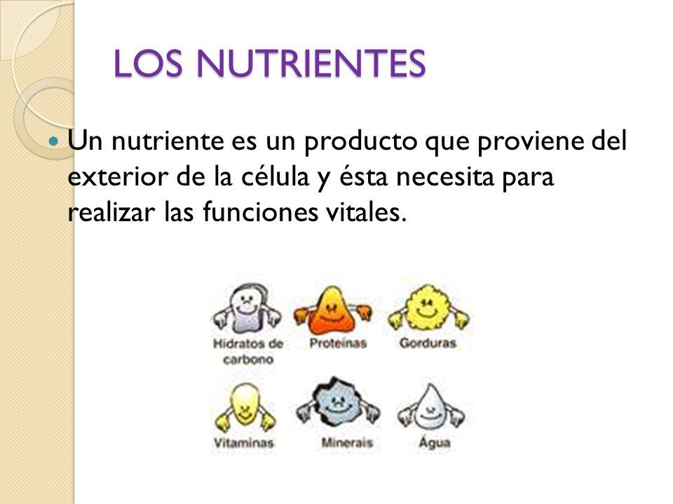 LOS NUTRIENTESUn nutriente es un producto que proviene del exterior de la célula y ésta necesita para realizar las funciones vitales.