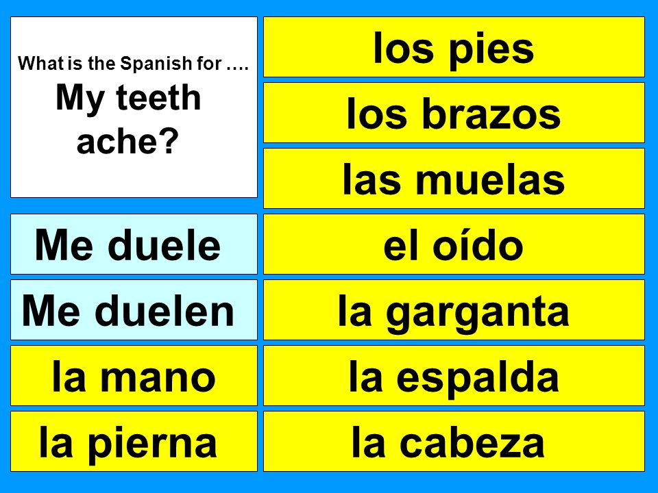 What is the Spanish for ….