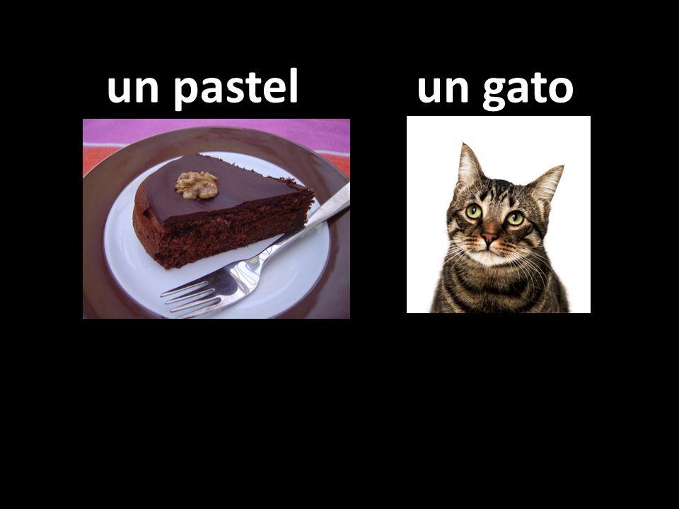 un pastel un gato