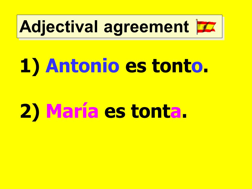 Adjectival agreement Antonio es tonto. 2) María es tonta.