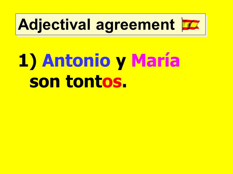 Antonio y María son tontos.