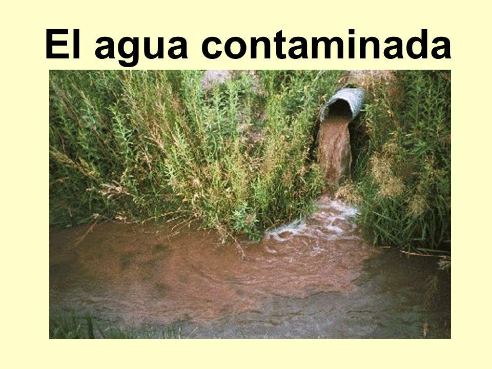 El agua contaminada