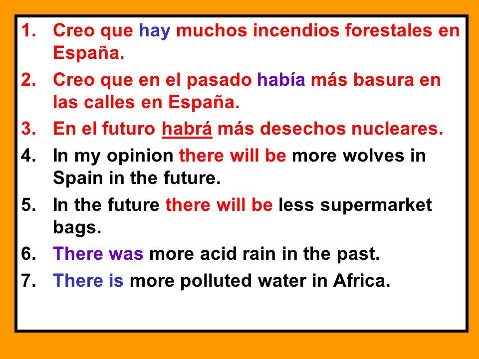 Creo que hay muchos incendios forestales en España.