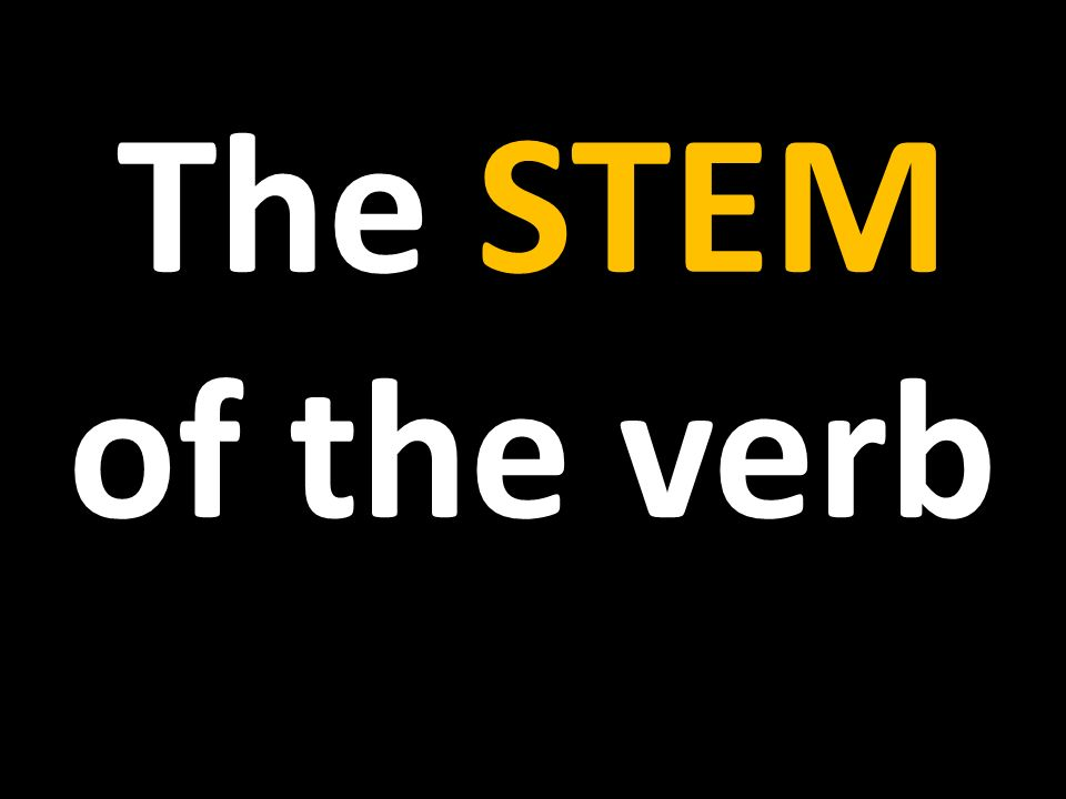 The STEM of the verb