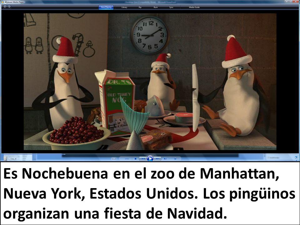 Es Nochebuena en el zoo de Manhattan, Nueva York, Estados Unidos