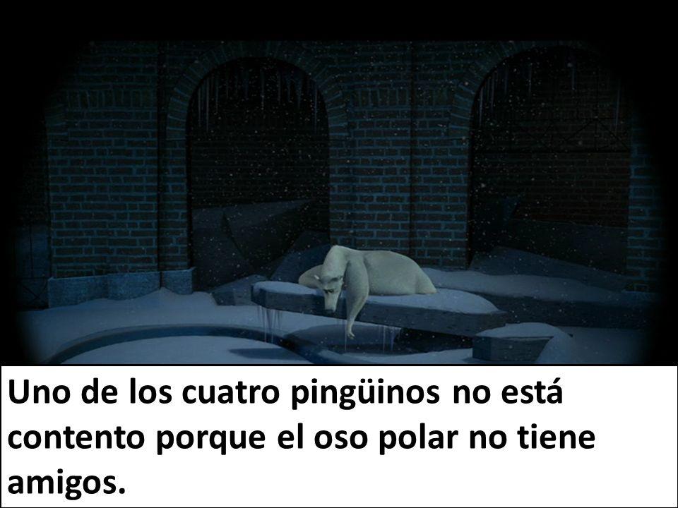 Uno de los cuatro pingüinos no está contento porque el oso polar no tiene amigos.