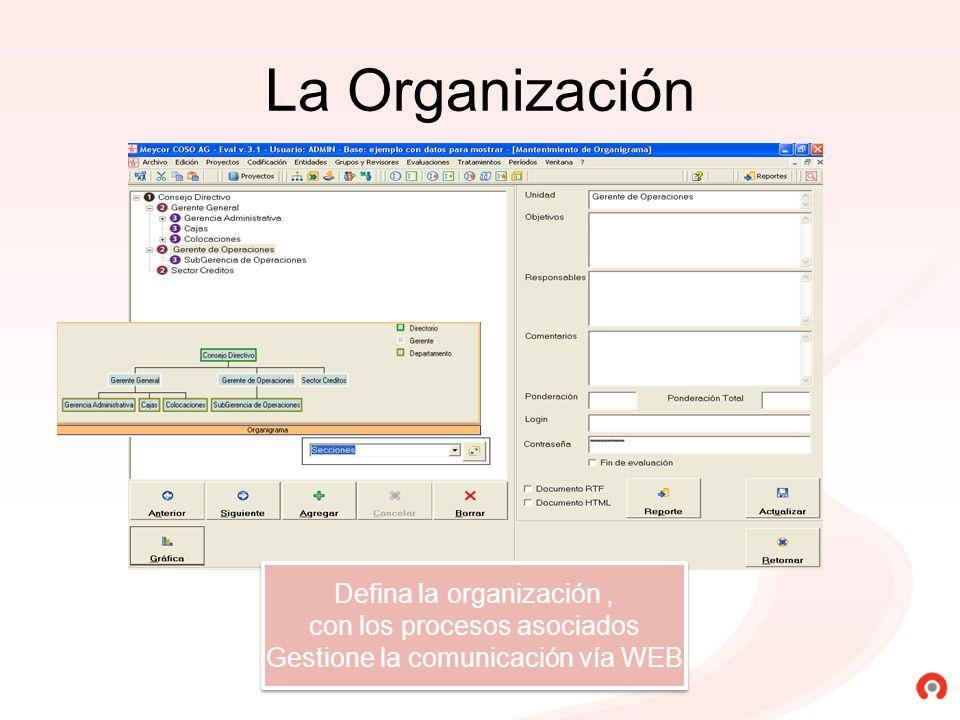 La Organización Defina la organización , con los procesos asociados