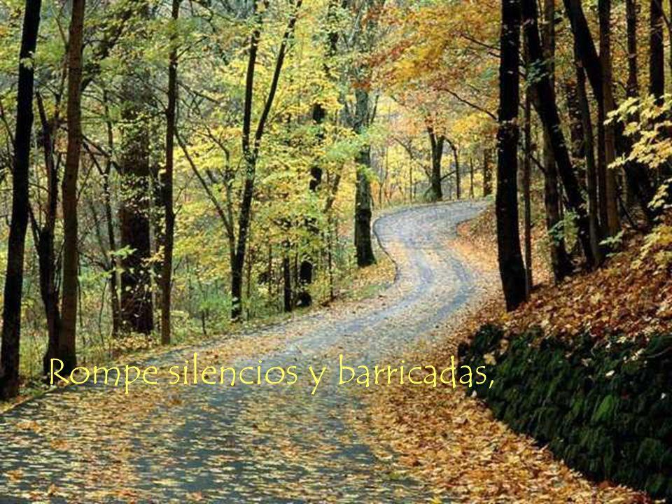 Rompe silencios y barricadas,