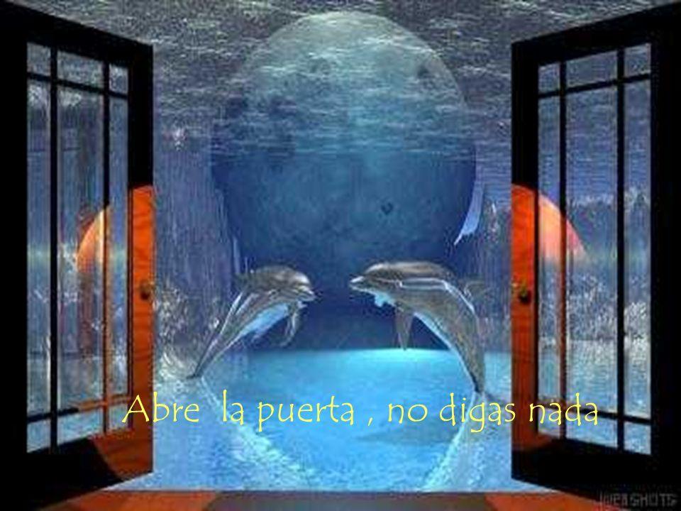Abre la puerta , no digas nada
