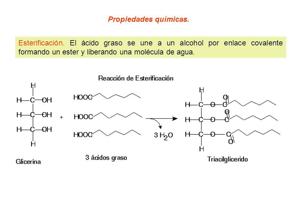 Propiedades químicas. Esterificación.