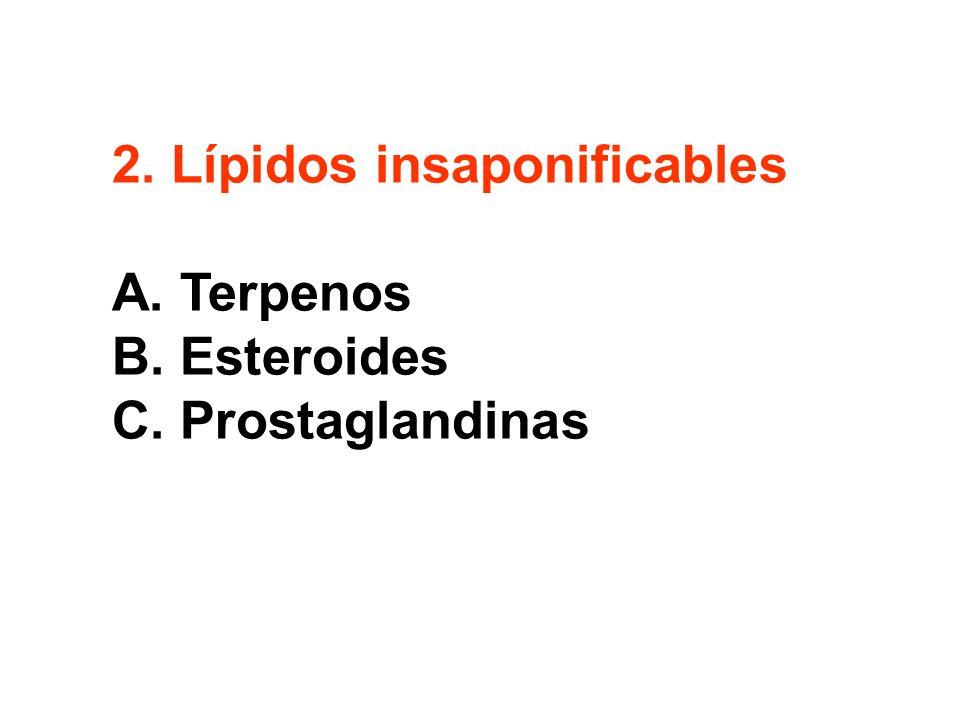 2. Lípidos insaponificables