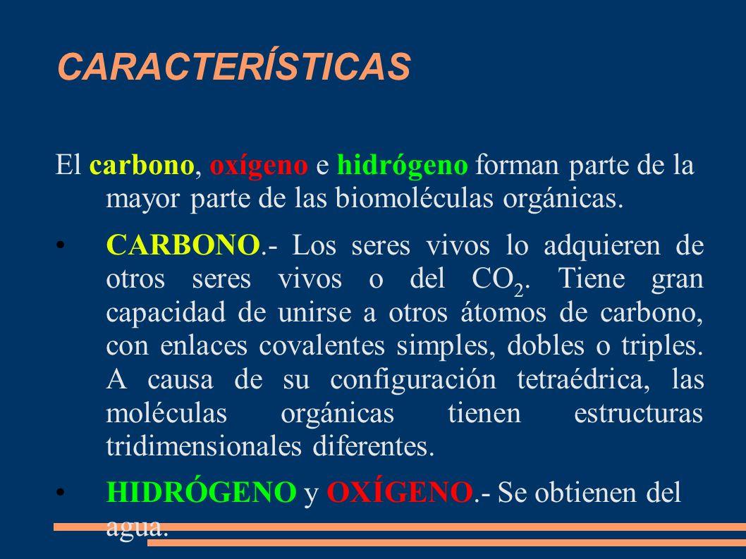 CARACTERÍSTICAS El carbono, oxígeno e hidrógeno forman parte de la mayor parte de las biomoléculas orgánicas.