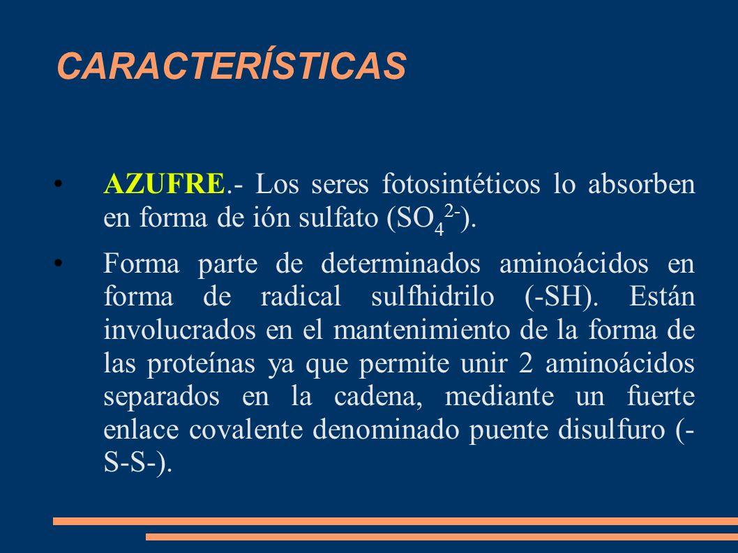 CARACTERÍSTICASAZUFRE.- Los seres fotosintéticos lo absorben en forma de ión sulfato (SO42-).