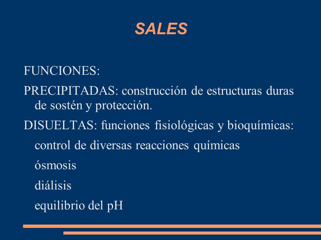 SALES FUNCIONES: PRECIPITADAS: construcción de estructuras duras de sostén y protección. DISUELTAS: funciones fisiológicas y bioquímicas:
