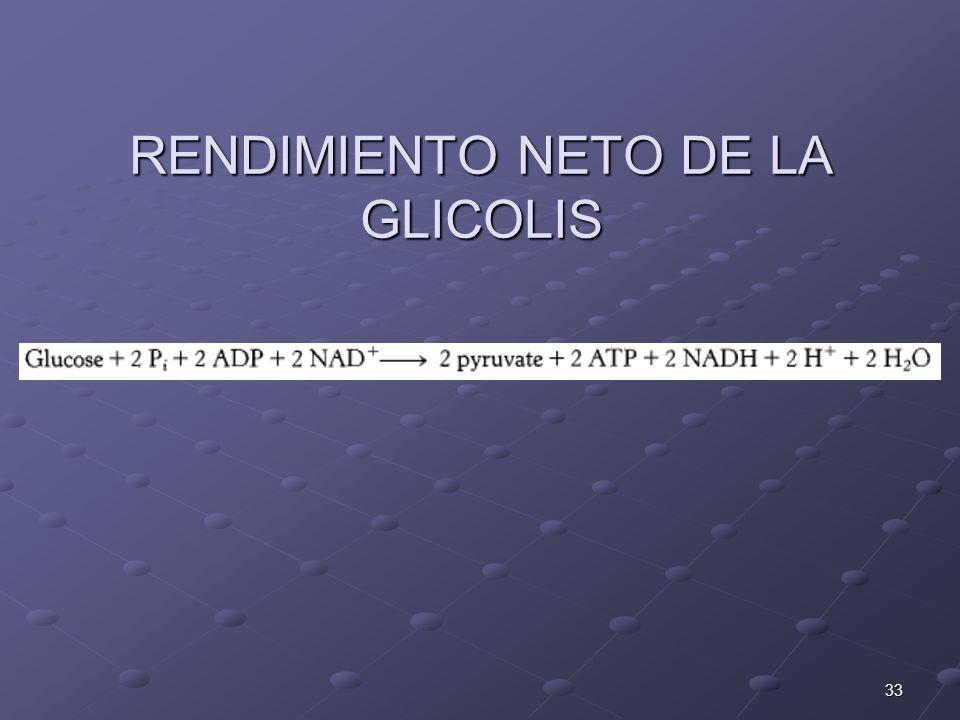 RENDIMIENTO NETO DE LA GLICOLIS