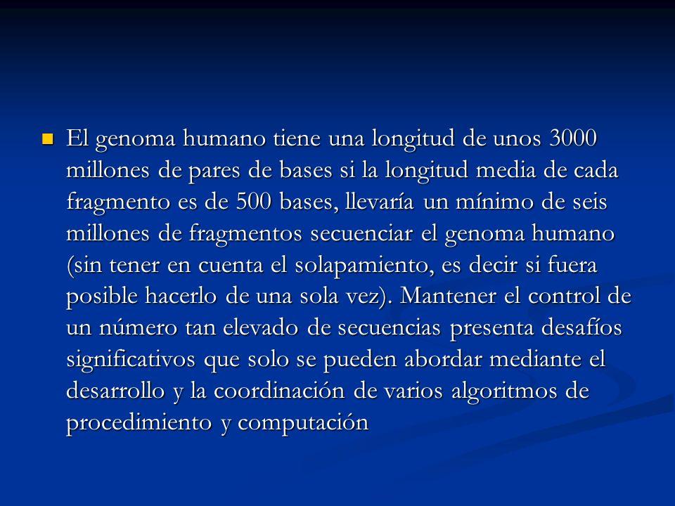 El genoma humano tiene una longitud de unos 3000 millones de pares de bases si la longitud media de cada fragmento es de 500 bases, llevaría un mínimo de seis millones de fragmentos secuenciar el genoma humano (sin tener en cuenta el solapamiento, es decir si fuera posible hacerlo de una sola vez).
