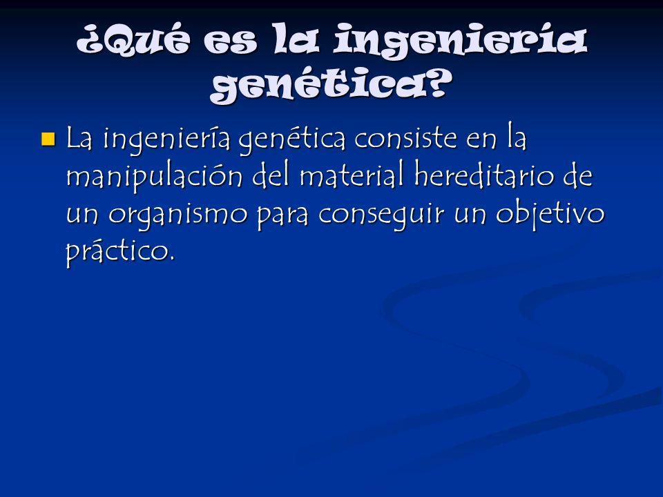 ¿Qué es la ingeniería genética