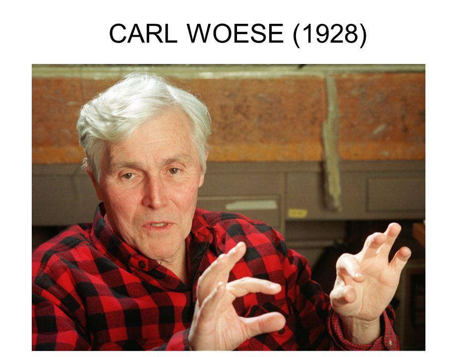 CARL WOESE (1928)