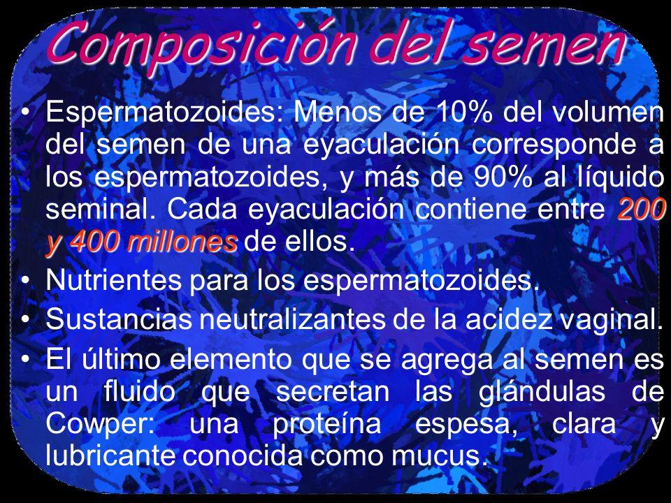 Composición del semen