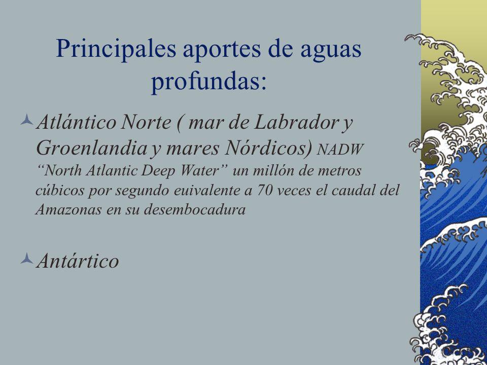 Principales aportes de aguas profundas: