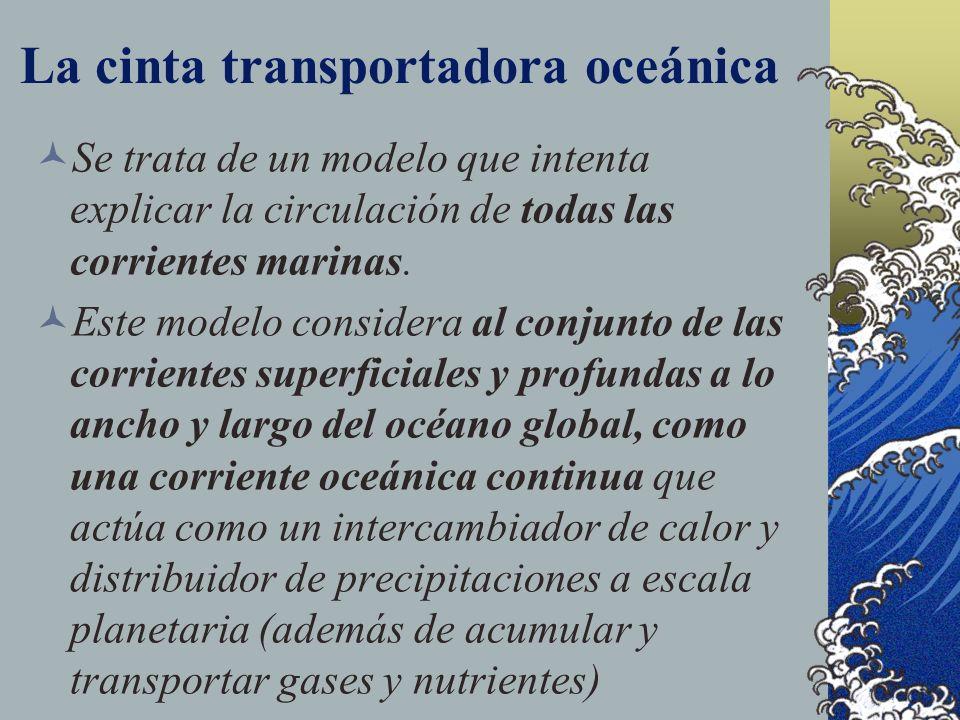 La cinta transportadora oceánica