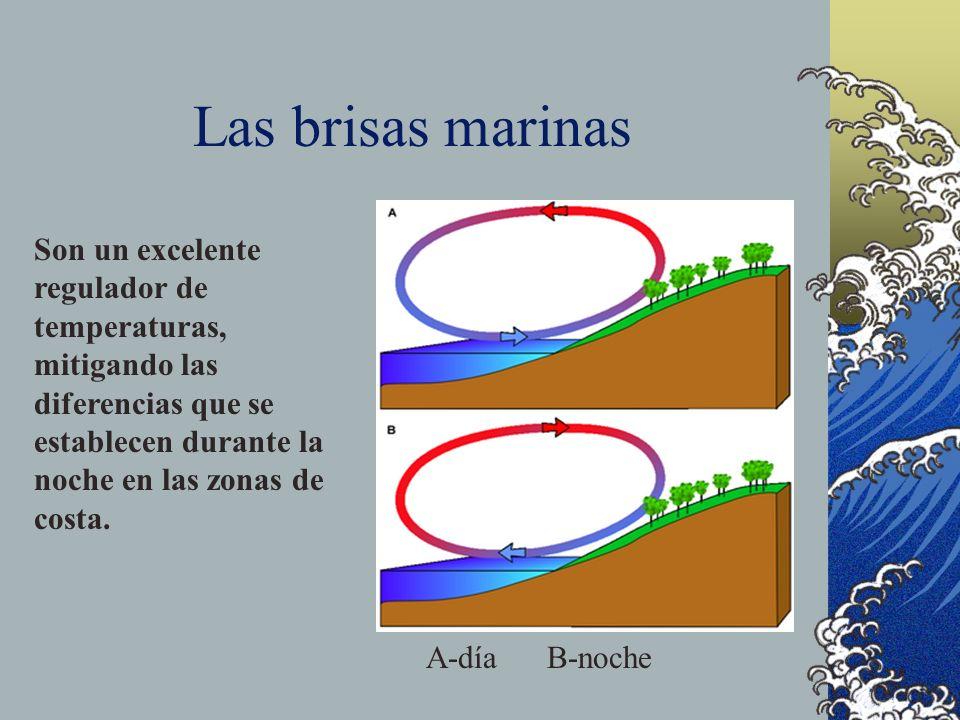 Las brisas marinasSon un excelente regulador de temperaturas, mitigando las diferencias que se establecen durante la noche en las zonas de costa.