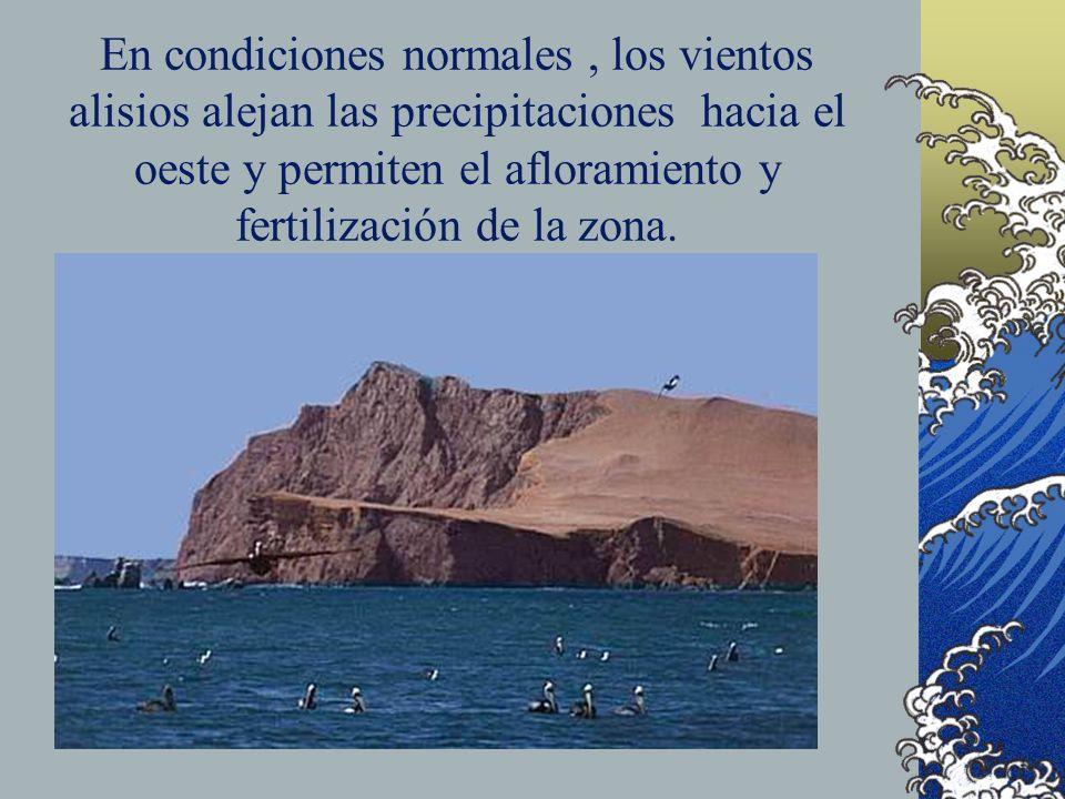 En condiciones normales , los vientos alisios alejan las precipitaciones hacia el oeste y permiten el afloramiento y fertilización de la zona.