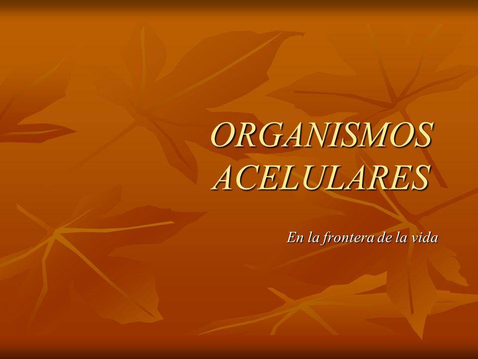 ORGANISMOS ACELULARES