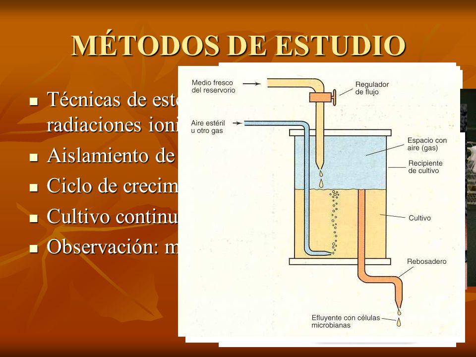 MÉTODOS DE ESTUDIO Técnicas de esterilización: autoclave, radiaciones ionizantes, filtración... Aislamiento de microorganismos.