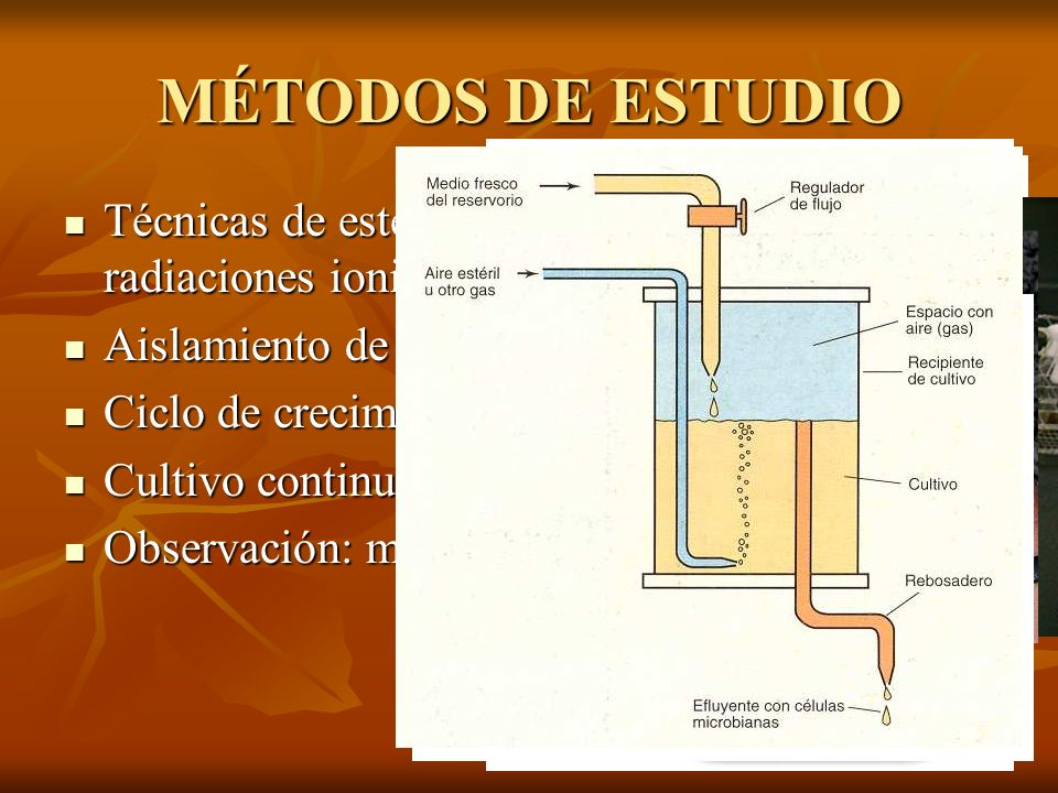 MÉTODOS DE ESTUDIOTécnicas de esterilización: autoclave, radiaciones ionizantes, filtración... Aislamiento de microorganismos.