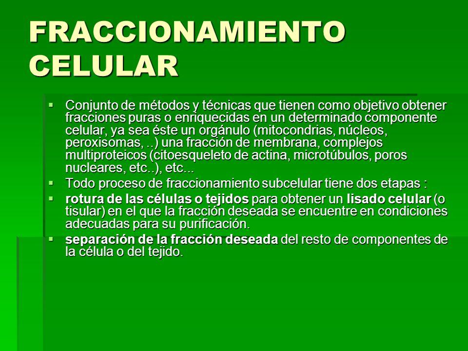 FRACCIONAMIENTO CELULAR