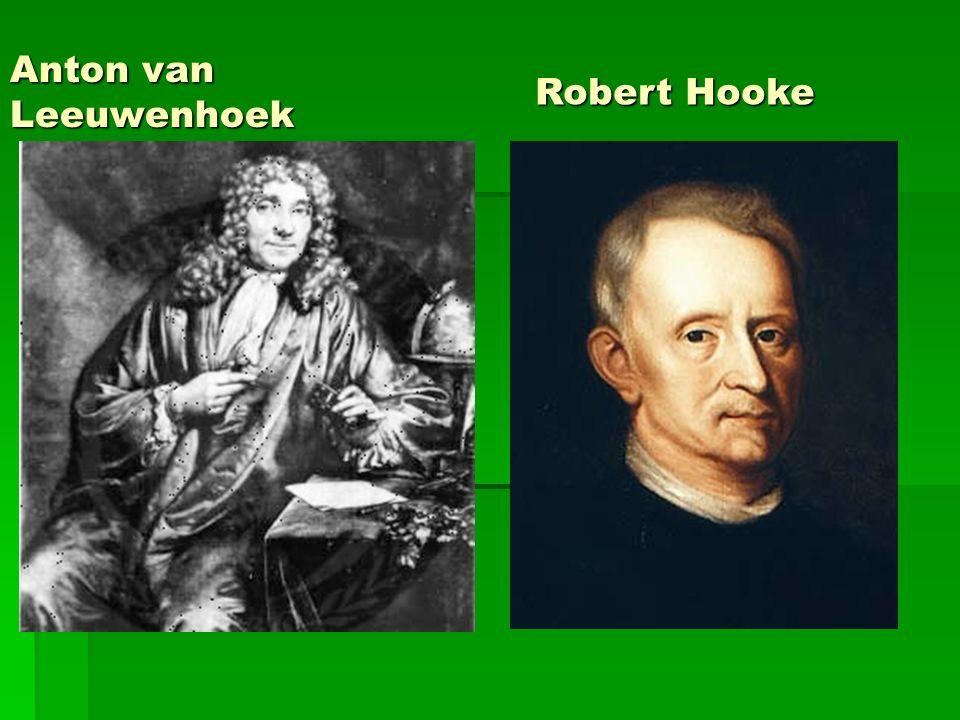 Anton van Leeuwenhoek Robert Hooke