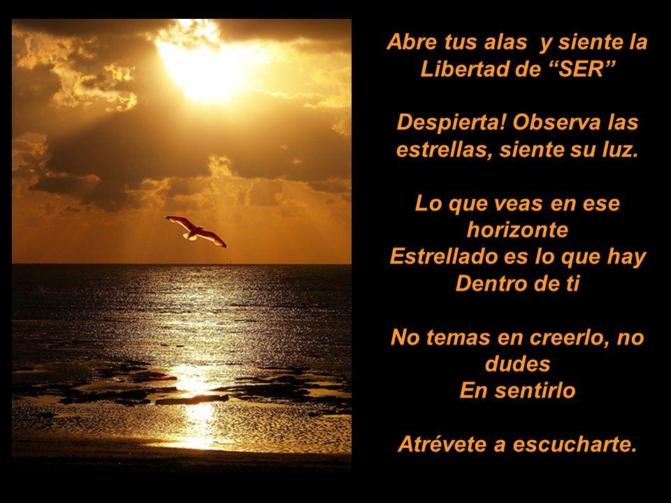 Abre tus alas y siente la Libertad de SER