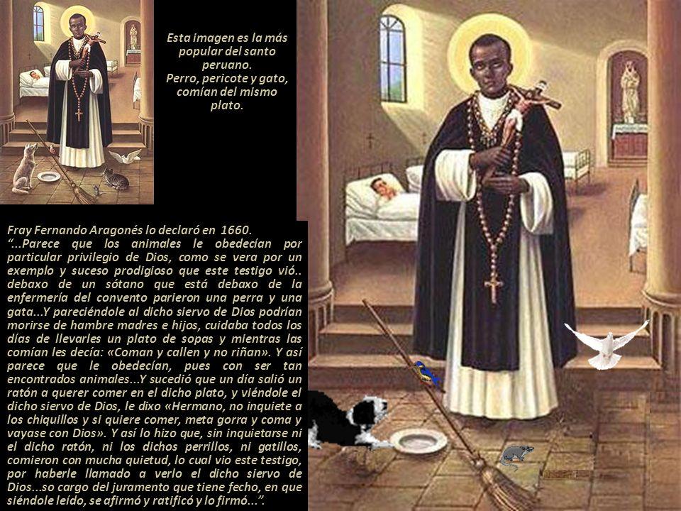 Esta imagen es la más popular del santo peruano.